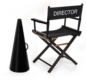 the director's chair director chair