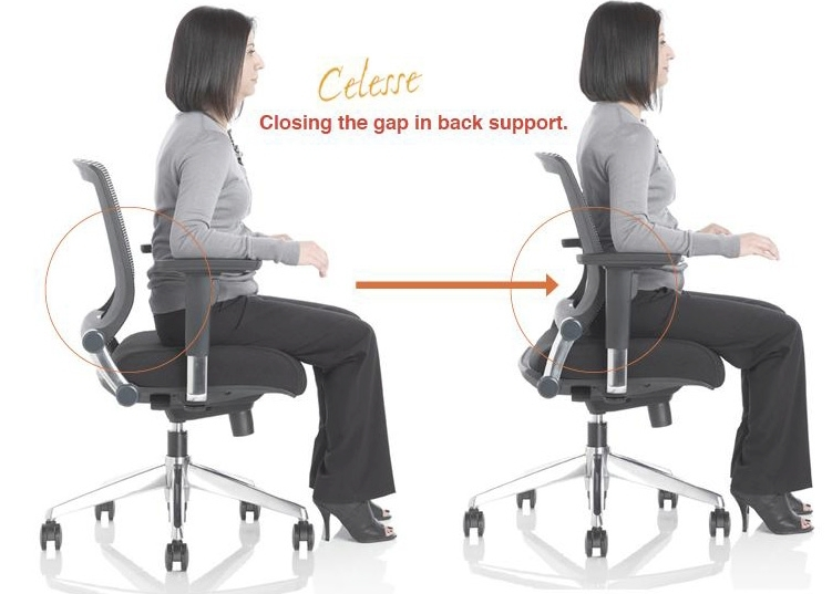 best lumbar support cushion for office chair best lumbar support cushion for office chair designs dreamer intended for stunning office chairs back support