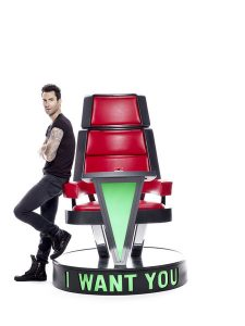 the voice chair nup